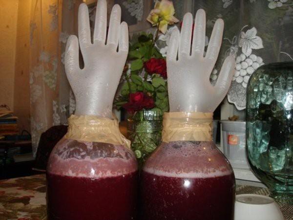 Самогон из сливы: классический рецепт (дрожжевой и без дрожжей)