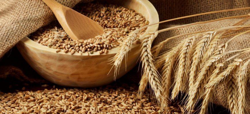 Пшеница для самогона
