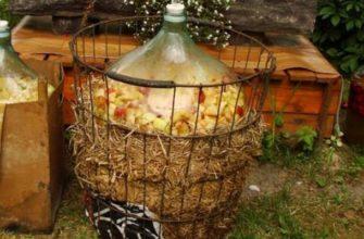 Яблочная брага для кальвадаса