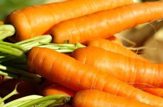 самогон на морковке рецепт