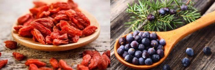 Настой на кизиле с можживеловыми ягодами