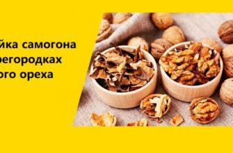 Настойка самогона на перегородках грецкого ореха рецепт