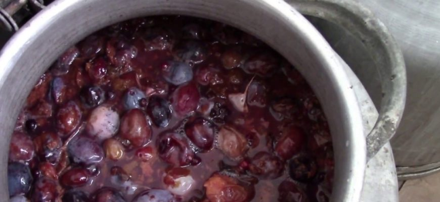 Брага для самогона из фруктов