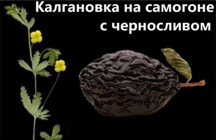 Калгановка на самогоне рецепт с черносливом