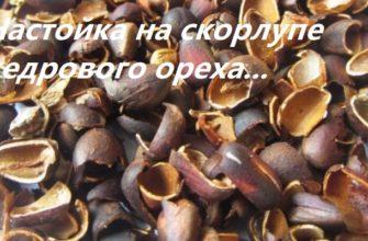 настойки на скорлупе кедрового ореха