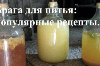 Брага для питья